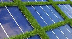 Taierea vegetatiei parcuri fotovoltaice
