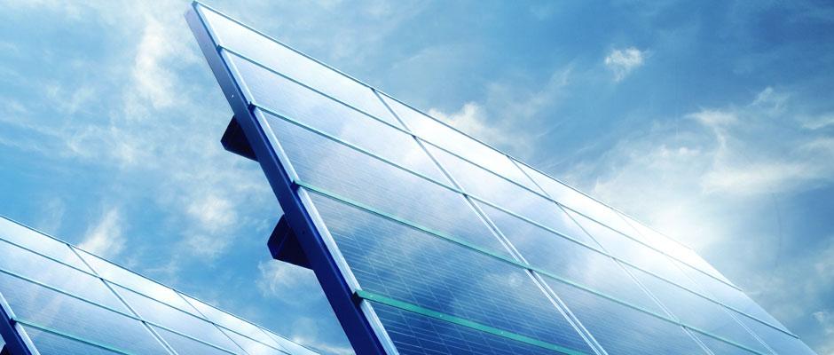 Vegetation management for solar parks